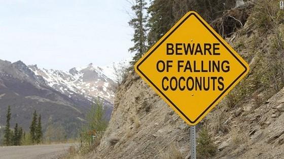 Vigyázz a kókuszdió-hullásra!