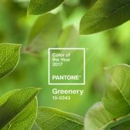 A lombzöld lesz az év színe 2017-ben