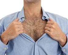 Megáll az ész! Összefüggés van a férfiak szőrös mellkasa és az intelligencia között