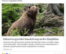A magyar közszolgálati média szerint támadnak medvék a Hargitában