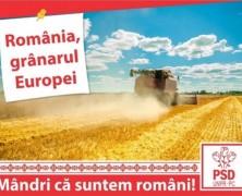 Szebben aranylik a fehérorosz búza a PSD-nek: kampányolnak is vele