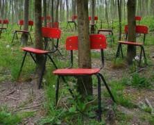 Tényleg kinőttek a fák a II. világháború kirobbanásakor otthagyott esküvői székekből?