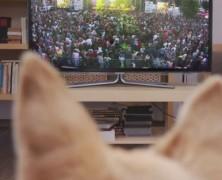 A kutyád a tévéből fogja megtudni, hogy kint vagy a magyar napokon