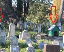 Mit keresnek kutyaházak, sőt kutyák a sírok között?
