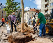Kolozsvár polgármestere fákat ültetett, fotózkodott, de aztán a fák eltűntek. Frissítés: csak cserélik!